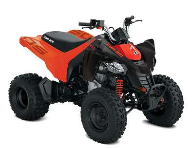 https://www.new.bikes4sale.nz/i/Images/CanAm/Models/TN_DS.jpg